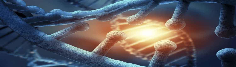 stem cell therapy palm beach gardens